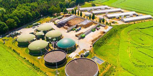 Biomass power facility example